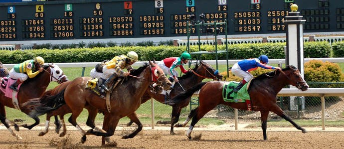 Where to Watch the Kentucky Derby in Denver