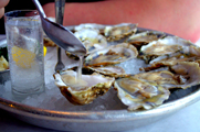 Shuck It Up at Oyster Happy Hour at Jax Fish House