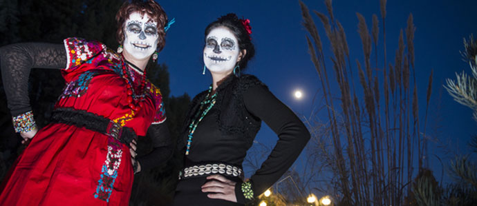 Where to Celebrate Halloween in Denver