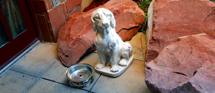 Randolph's Restaurant & Bar Opens the Paw-tio to Four-Legged Guests