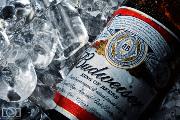 Craft Beer Denver | Budweiser Wants to Be the First Beer Consumed on Mars | Drink Denver