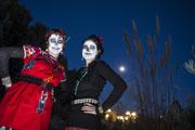 Where to Celebrate Halloween in Denver