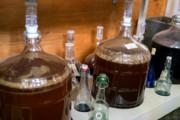Craft Beer Denver | Move Over Kombucha, Kefir Beer Could Be the Next Big Thing in Fermentation | Drink Denver
