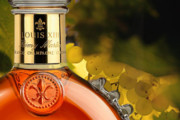Louis XIII Cognac Reveals John Malkovich and Robert Rodriguez Film Project, 100 Years: The Movie You Will Never See