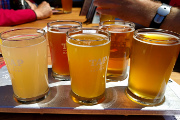 Pay Tribute to Sessionable Beers at Sesh Fest 2016