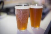 Summer Brew Fest Returns to Mile High Station